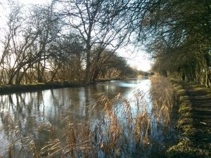welford arm, winter, grand union