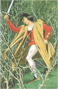 Ladybird, Sleeping Beauty, Prince tights