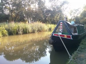 leicester line, narrowboat, barney boat, pea green, summer adventure